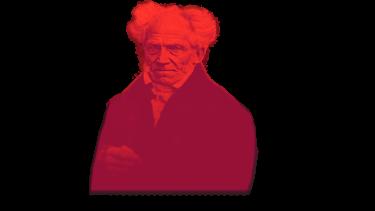Curso Schopenhauer
